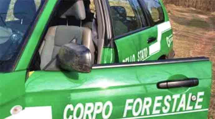 cfs-corpo-forestale-dello-stato