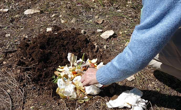Montepulciano-bucce-compost-andria