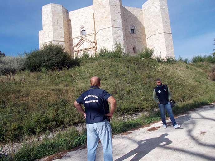 guardie-zoofile-federiciane-castel-del-monte