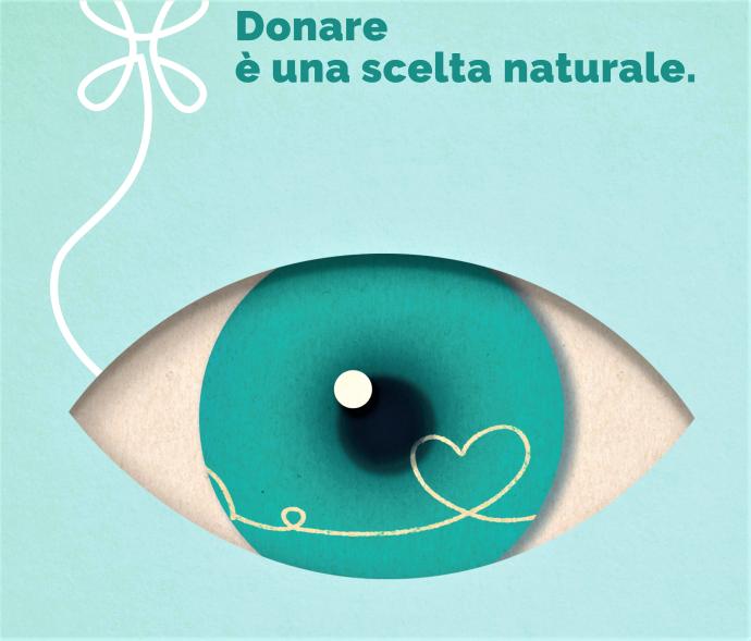 CNT-50×70-cornea