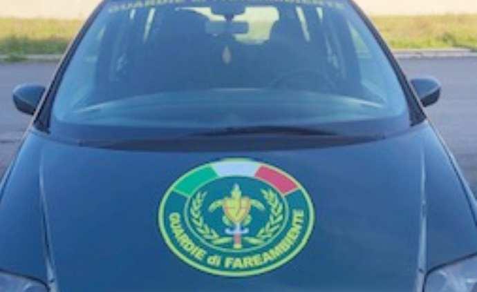 Foto auto di servizio anteriore fareambiente guerdie ecozoofile andria
