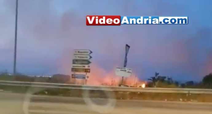 andria incendi zona pip(1)