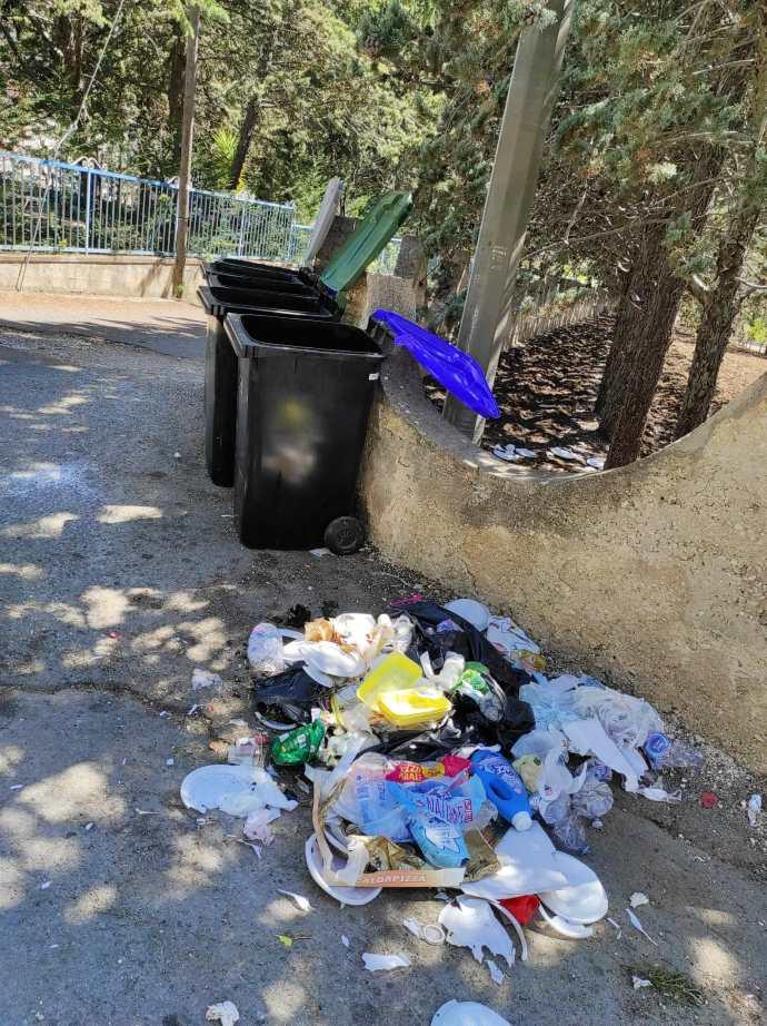rifiuti abbandonati viale delle pinete